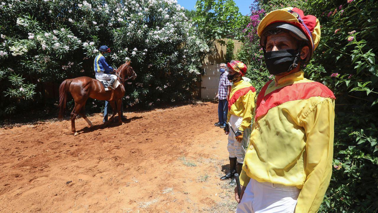 En Líbano se han reactivado las carreras de caballos