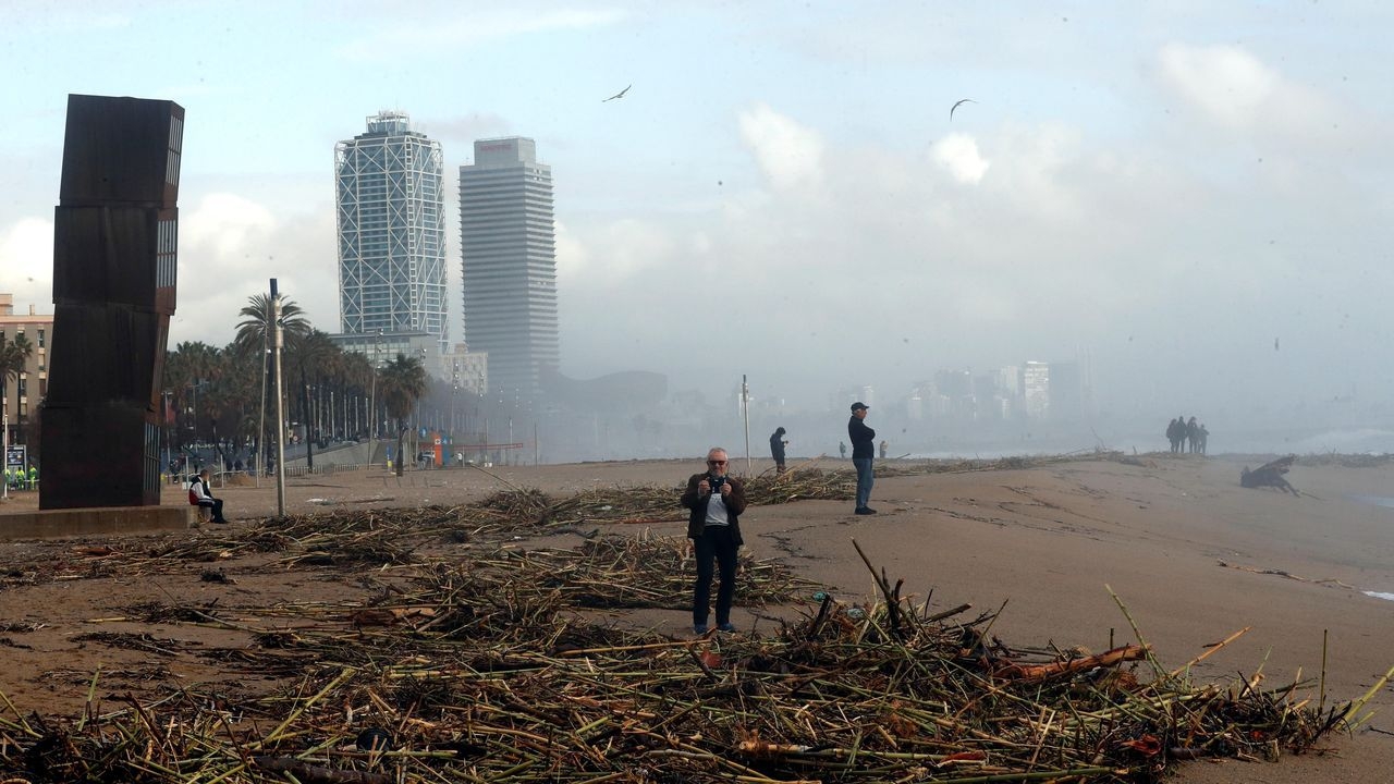 Varios curiosos se acercaron a la playa barcelonesa para sacar fotografías del arenal tras el azote de la borrasca Gloria.