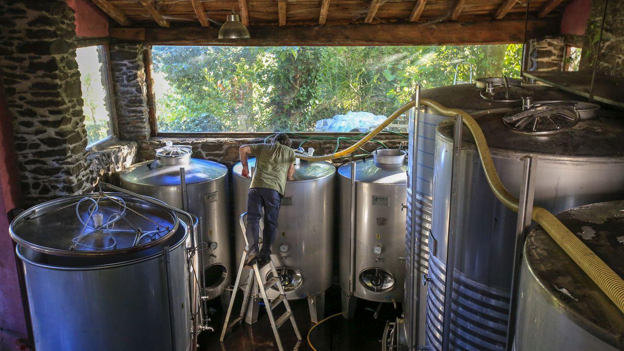 Depósitos de acero inoxidable en Adegas e Viñedos Lareu