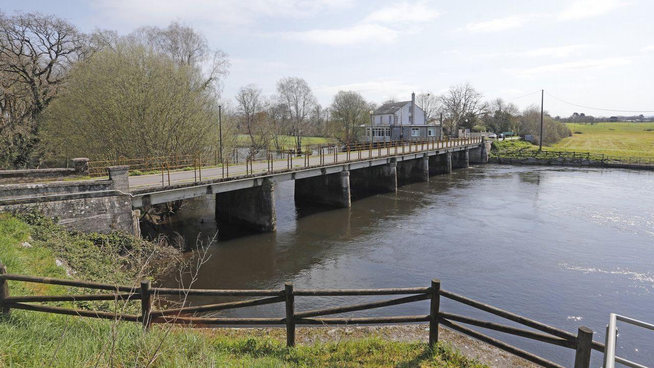 Imagen de archivo de un margen fluvial con especies de ribera