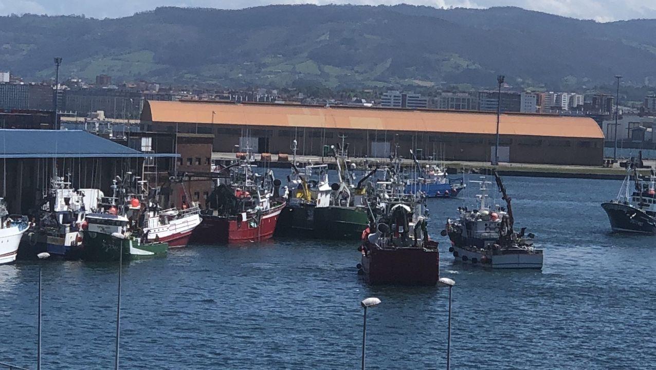 Cerqueros que participan en la costera del bocarte en El Musel, Gijón, donde venden varios gallegos
