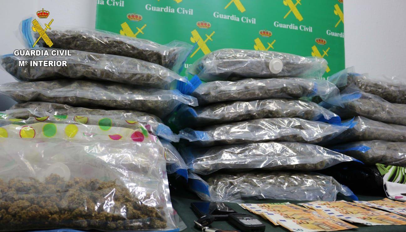Incautados 236 kilos de cannabis sativa en Castrillón