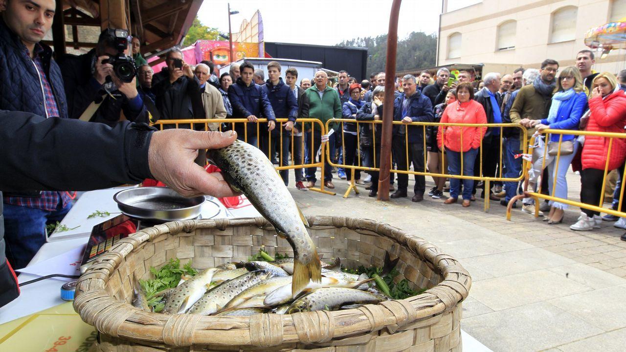 Festa da Troita de A Pontenova en el 2017