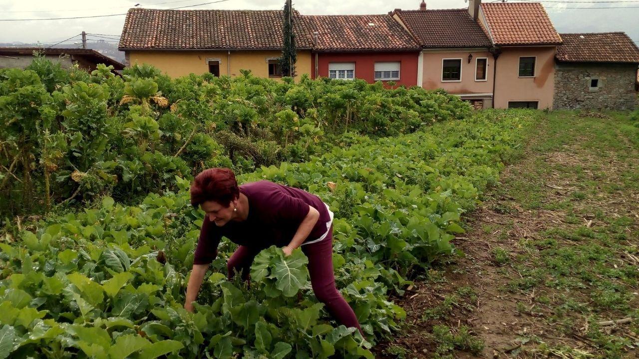 Vecina de Villamorsén (Lillo) en la huerta