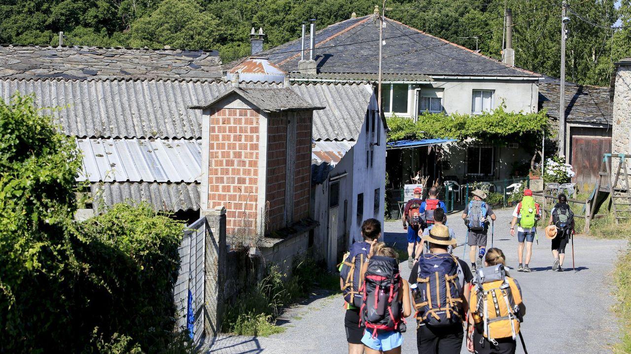 Ángeles Vázquez, conselleira de Medio Ambiente, Territorioe Vivenda: «Non hai barra libre para os parques eólicos en Galicia».Las viviendas deben estar en el propio trazado del Camino