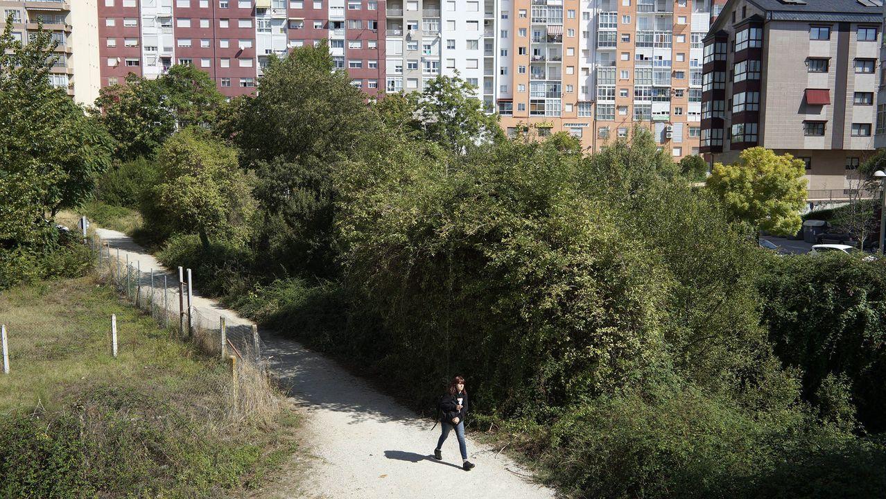Los refugios para las aves migratorias en las Rías Baixas.Parque y río Barbaña, final de la calle Clara Campoamor.