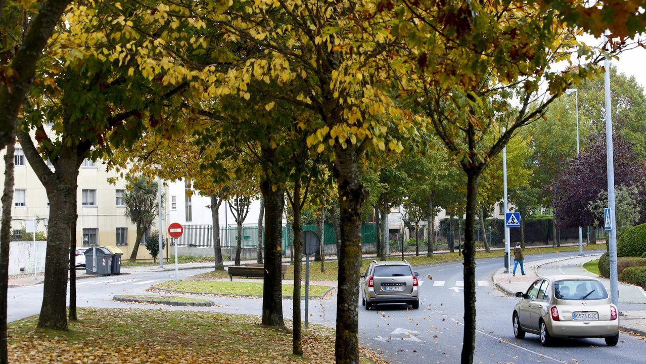 Los vecinos de A Milagrosa denuncian una iluminación deficiente de las calles del barrio.Una de las zonas que se analizó fueron los árboles de la Ronda de Fingoi
