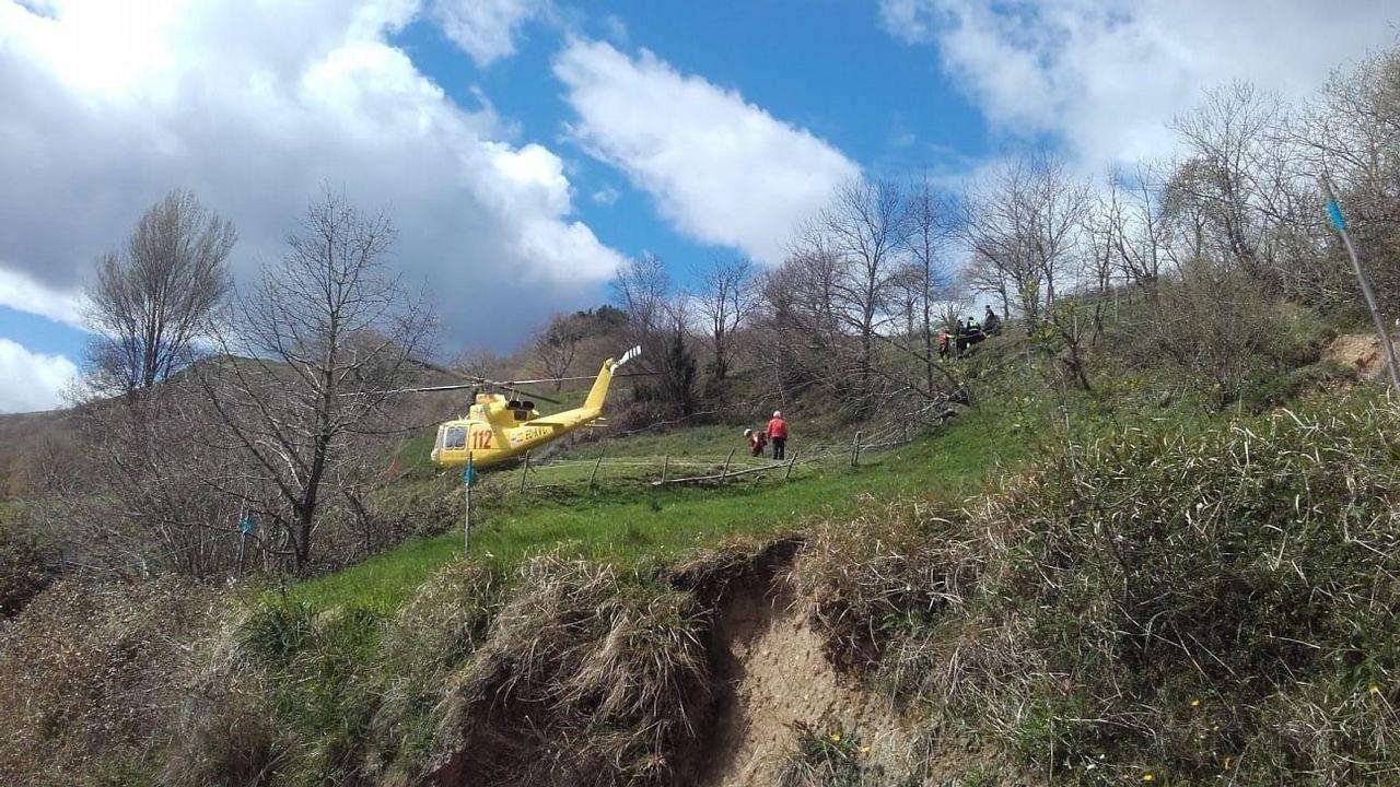 El oso rescatado en León no puede mover sus extremidades.El pasado día 11 se incautaron 20 toneladas de xarda en un barco amarrado en Muros