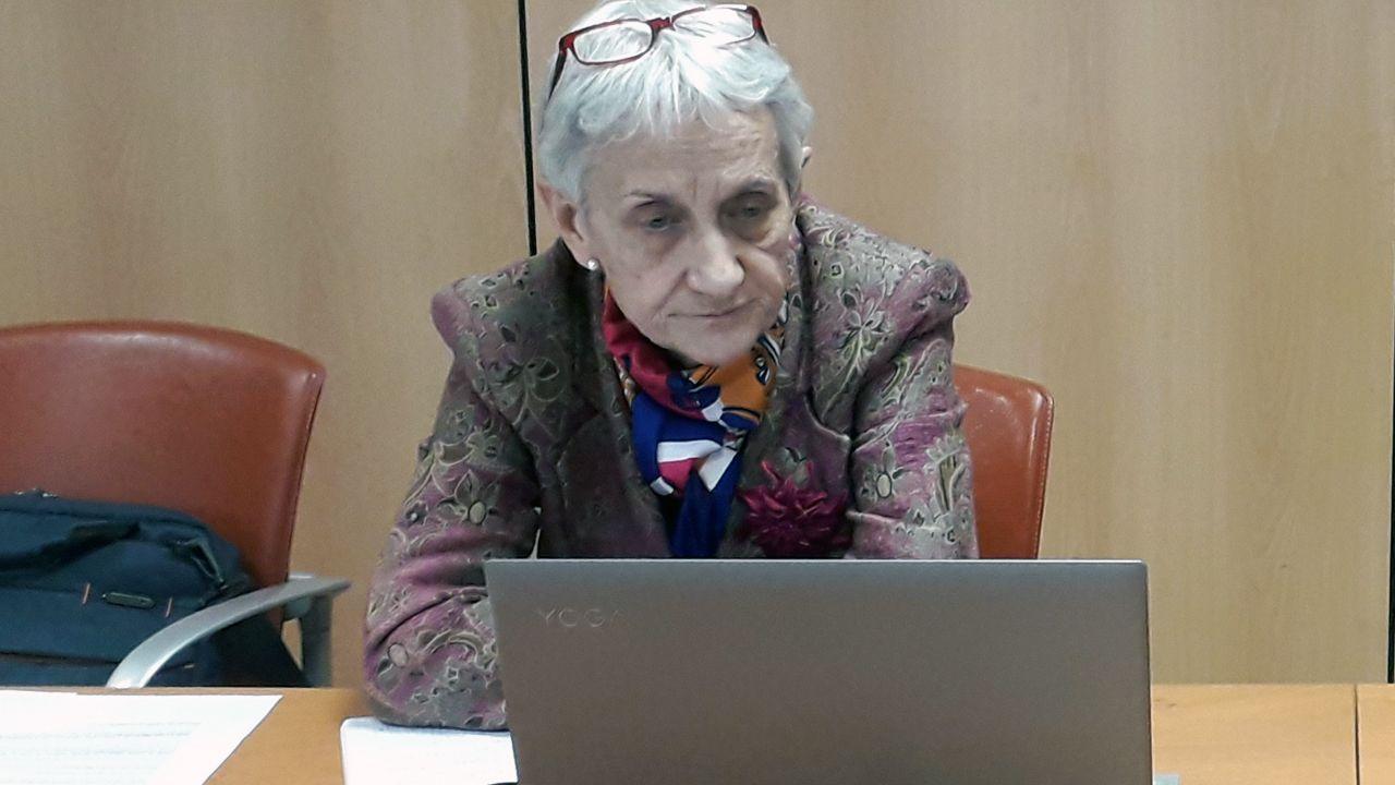 Concentraciones contra la Ronda Norte.Carmen Suárez, consejera de Educación, en una reunión online