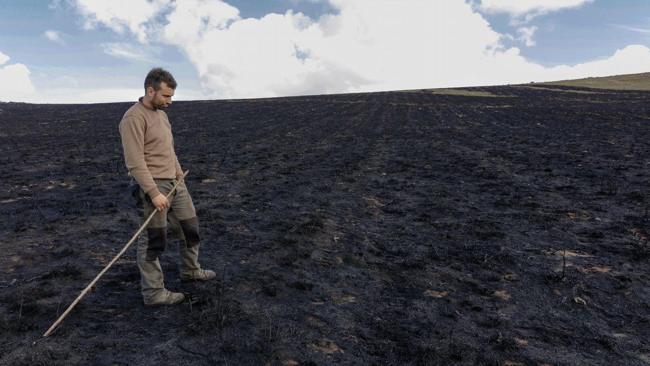 «A miña miseria chegou agora, non coa crise».Bomberos entre el humo generado por los incendios de Degaña y Cangas del Narcea