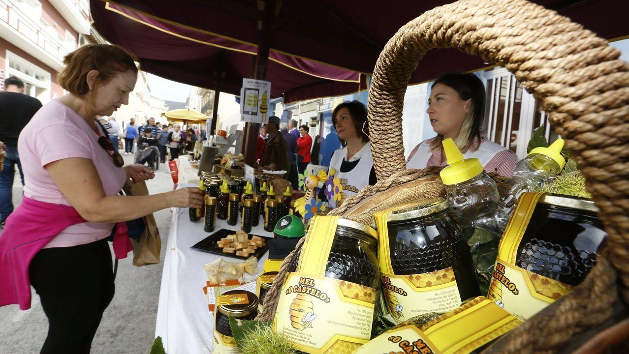 Feira do mel de Valadouro
