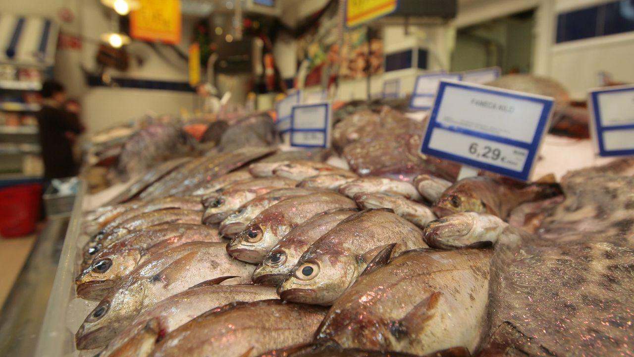 Productos de las pescaderías de la plazas de Lugo