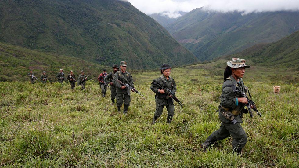 Miembros de las FARC patrullan en las montañas remotas de Colombia.