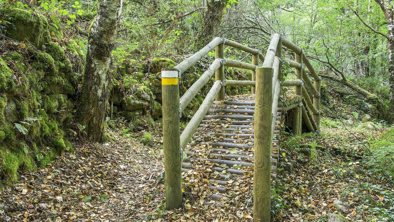 El Camiño de Rabacallos forma hoy parte de la ruta de la largo recorrido Cañón del Sil-Santa Cristina