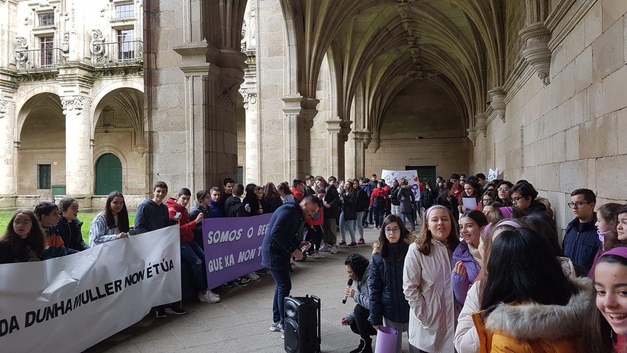 El vicepresidente de la Diputación de Ourense, Rosendo Fernández, recibió al alumnado del IES Carlos Casares, de Viana do Bolo, que celebraron un pleno juvenil sobre la violencia de género.