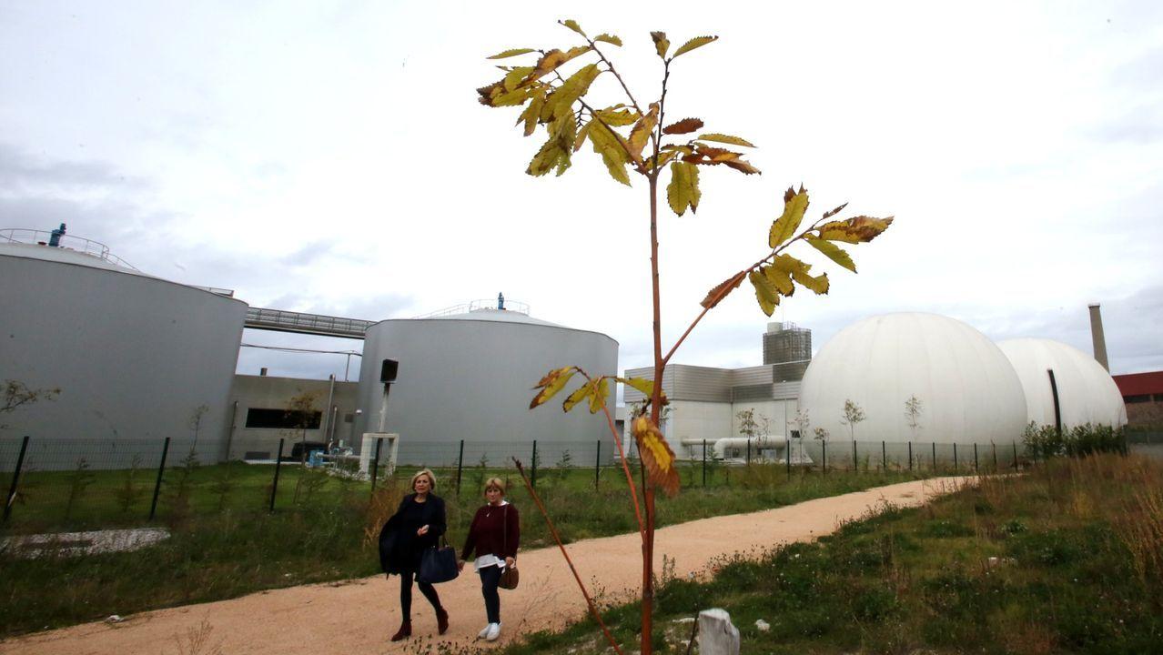 SOS por la ría de O Burgo.Depuradora del Lagares, que da servicio a Vigo y comarca