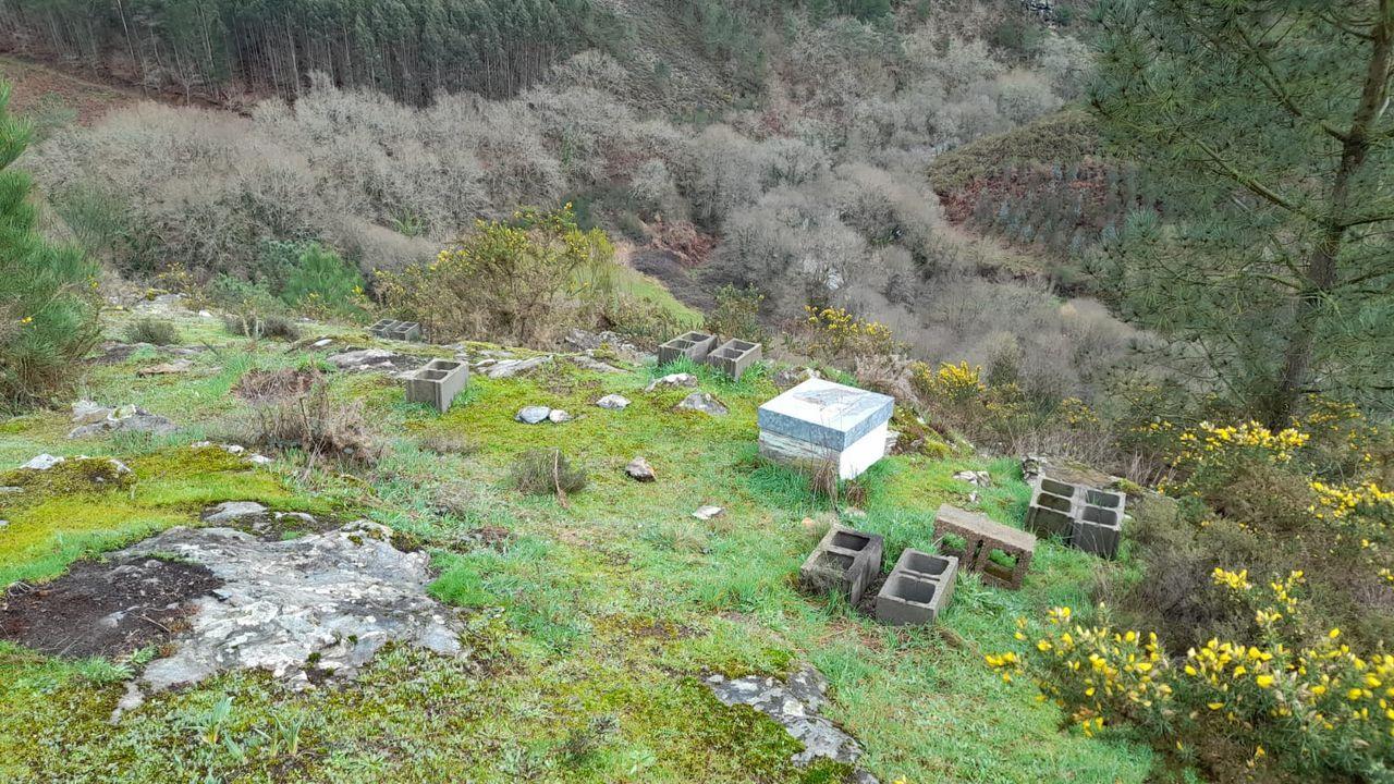 Las colmenas estaban en una zona de barranco