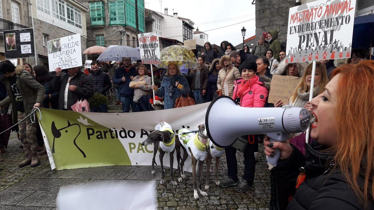 Los animalistas piden «justicia para Alma» en Chantada.Uno de los seis cachorros de Alma