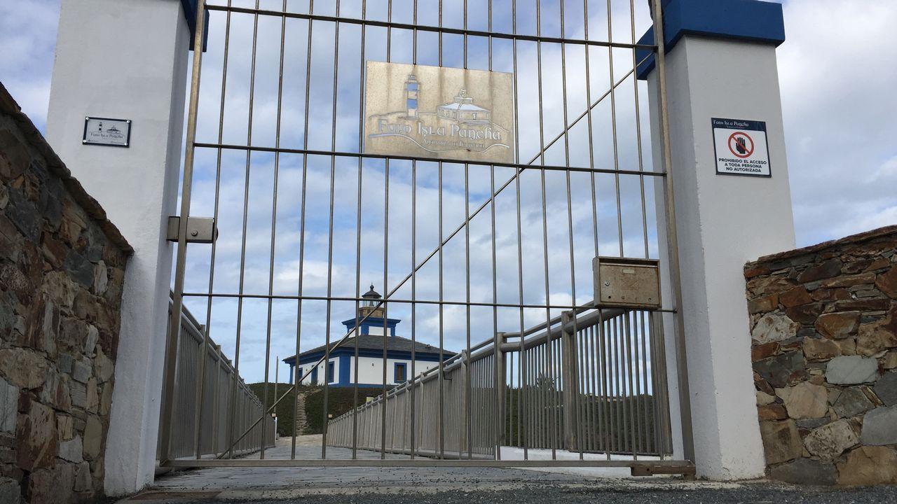 Barreiros realiza la primera subasta de ganado en Galicia