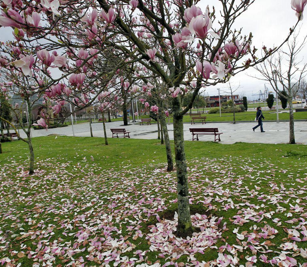 La primavera ya comienza a dejarse sentir en la comarca en todo su esplendor.
