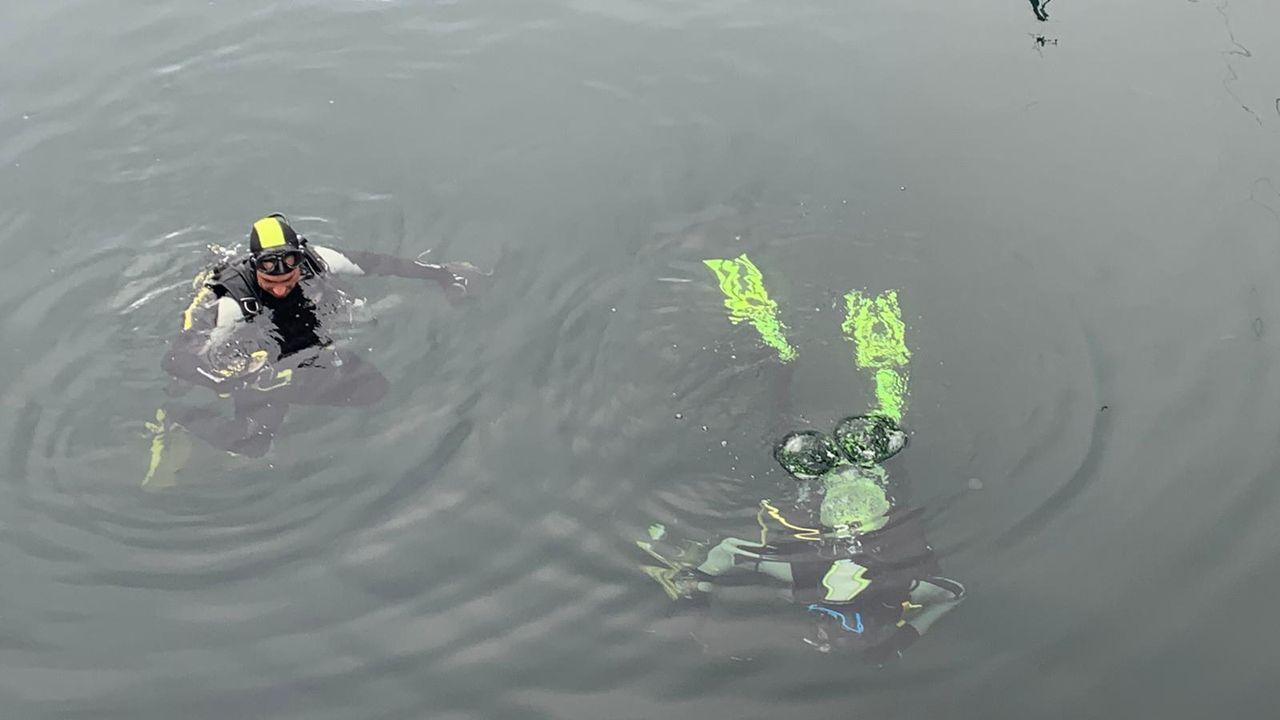 Las imágenes del libre marisqueo en Arousa.Limpieza del fondo marino en el puerto de Combarro impulsado por la asociación Mesa Pola Ría