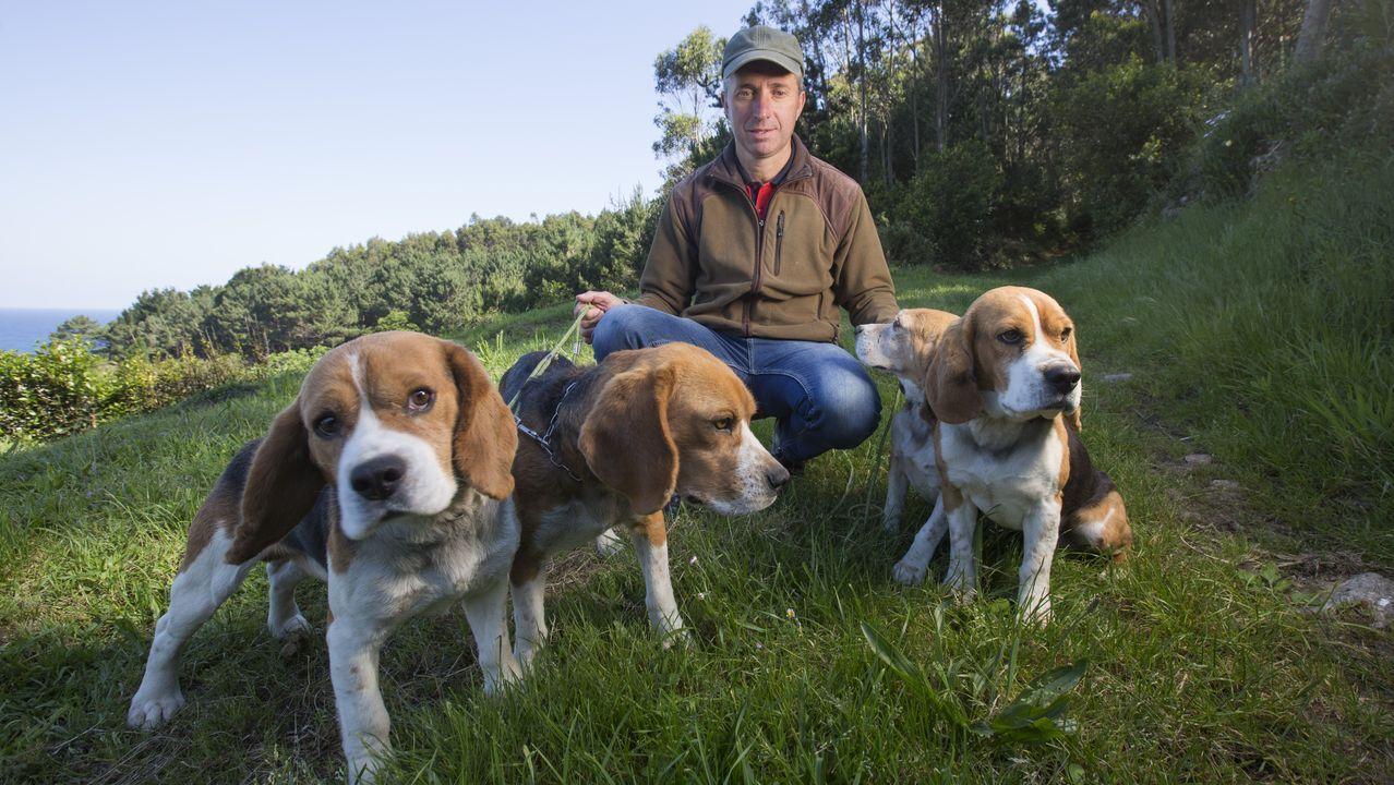 Ángel Romasanta recomienda llevar a los perros siempre atados para evitar envenenamientos