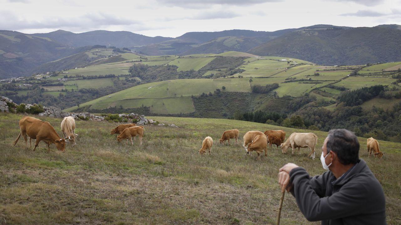 «Vendemos a carne a toda España por Internet».Una reciente visita guiada a las minas romanas de Margaride -en Quiroga- dentro de las actividades del Outono Xeolóxico del geoparque Montañas do Courel, en las que participó Luis López