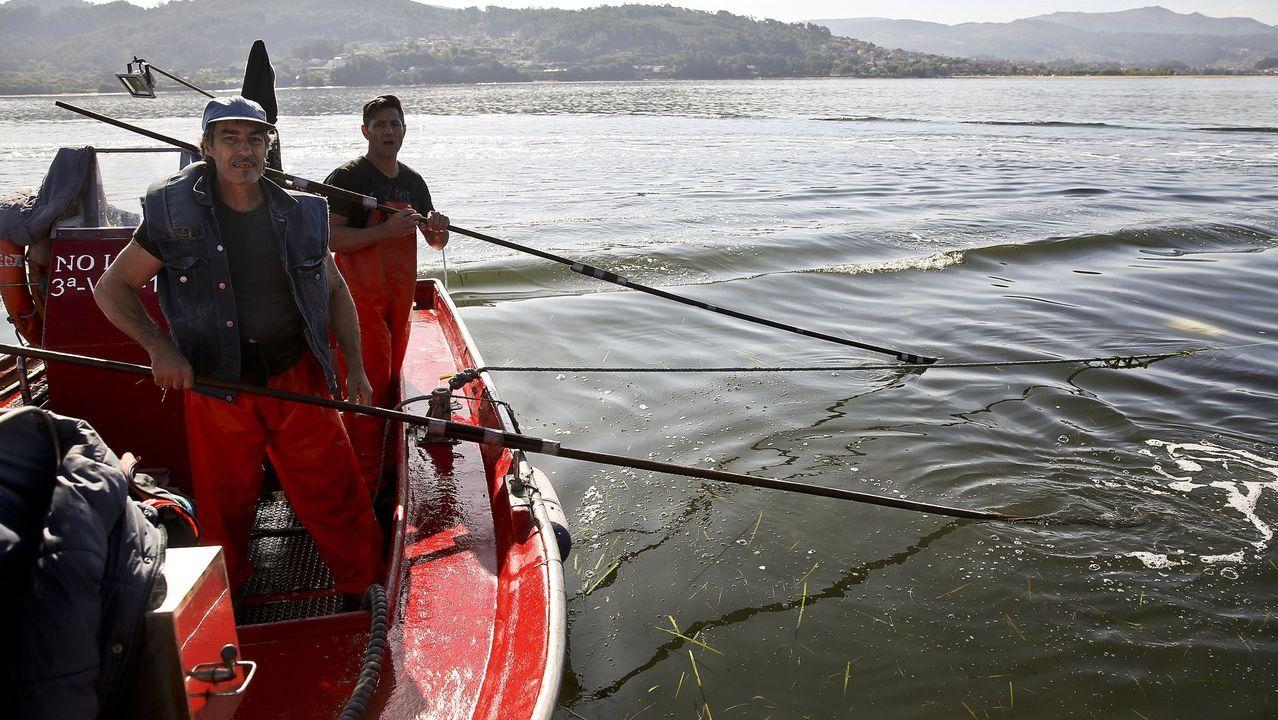 Ballenas azules en Galicia.El tramo abierto de la A-56, de 9 kilómetros, permite circunvalar Carballedo