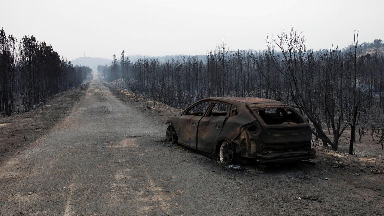 «Estos incendios tienen una pena de hasta 20 años de prisión».Adam Zagajewski, en el hotel de la Reconquista
