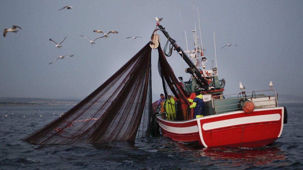 Un «xeiteiro» pescando sardina el pasado 23 de junio, en la ría de Arousa