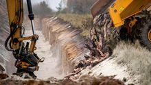 Eliminación de visones de una granja de Dinamarca después de que se comprobara que infectaron a humanos