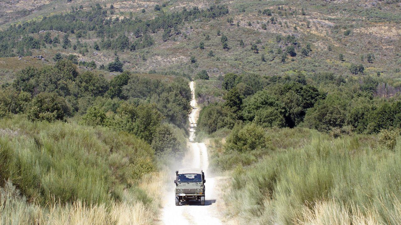 Imagen de uno de los caminos naturales de A Xironda, en Cualedro