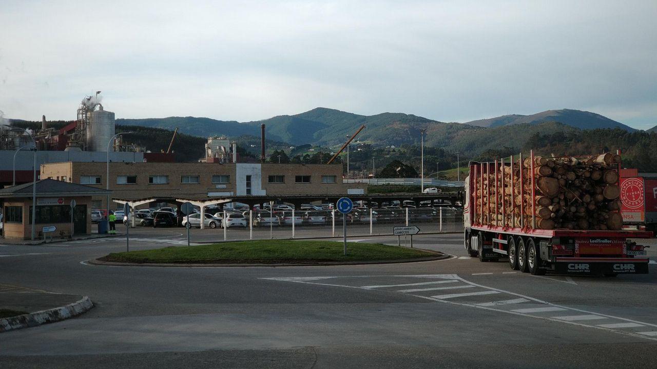 Patata afectada por la polilla guatemalteca