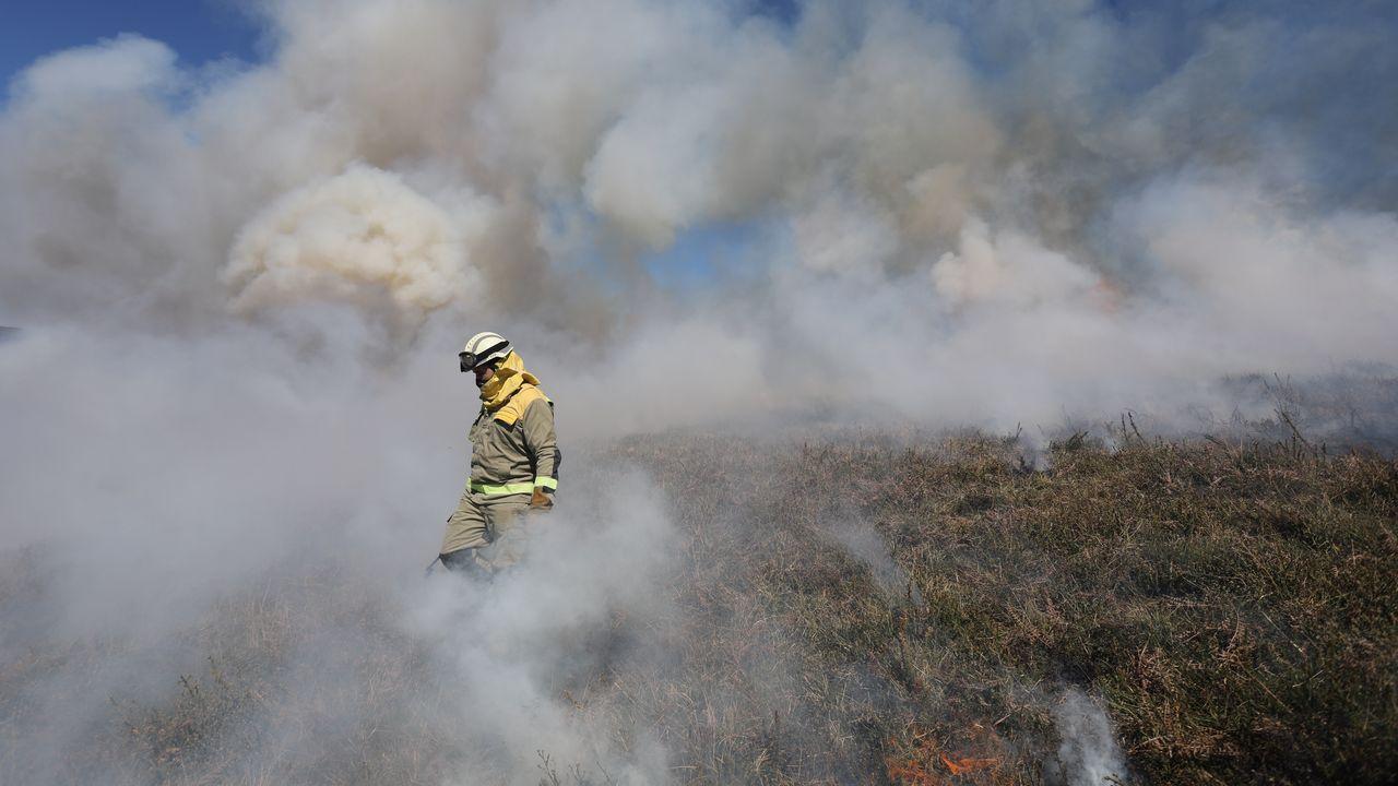 Las brigadas apagan un incendio forestal en el límite entre Cervantes (Lugo) y Balboa (León)