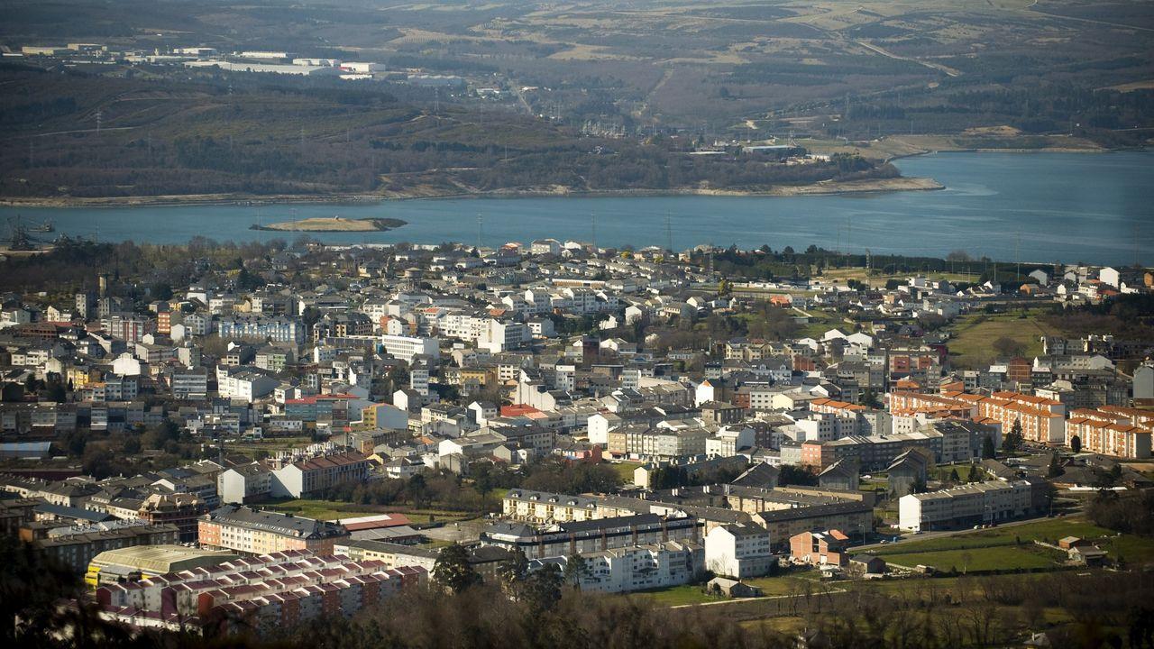 Áreas recreativas en la comarca de Ferrol.Imagen de archivo de una plantación de eucalipto
