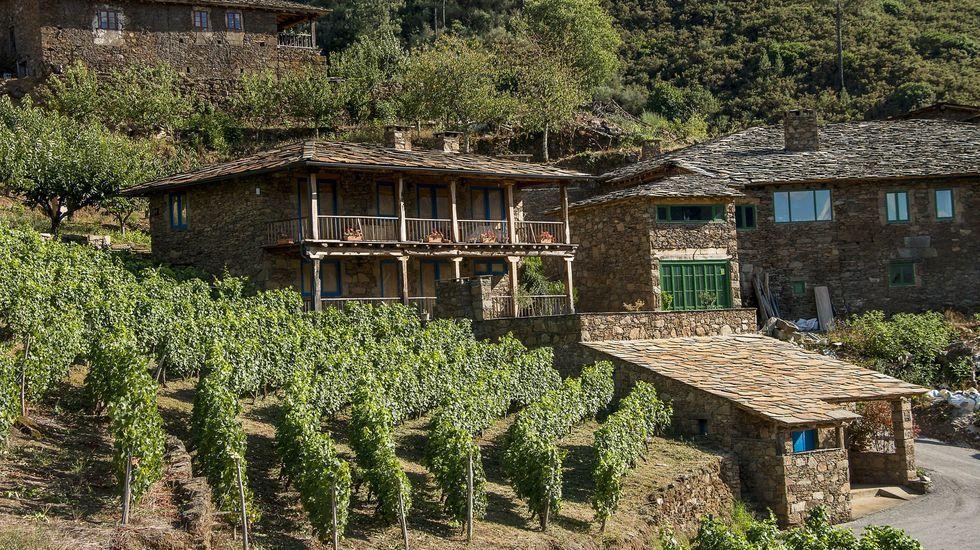 ¿Cómo podrá salir reforzado de la pandemia el sector del vino en Galicia?.Las viviendas rehabilitadas en A Míllara conservan la tipologia tradicional