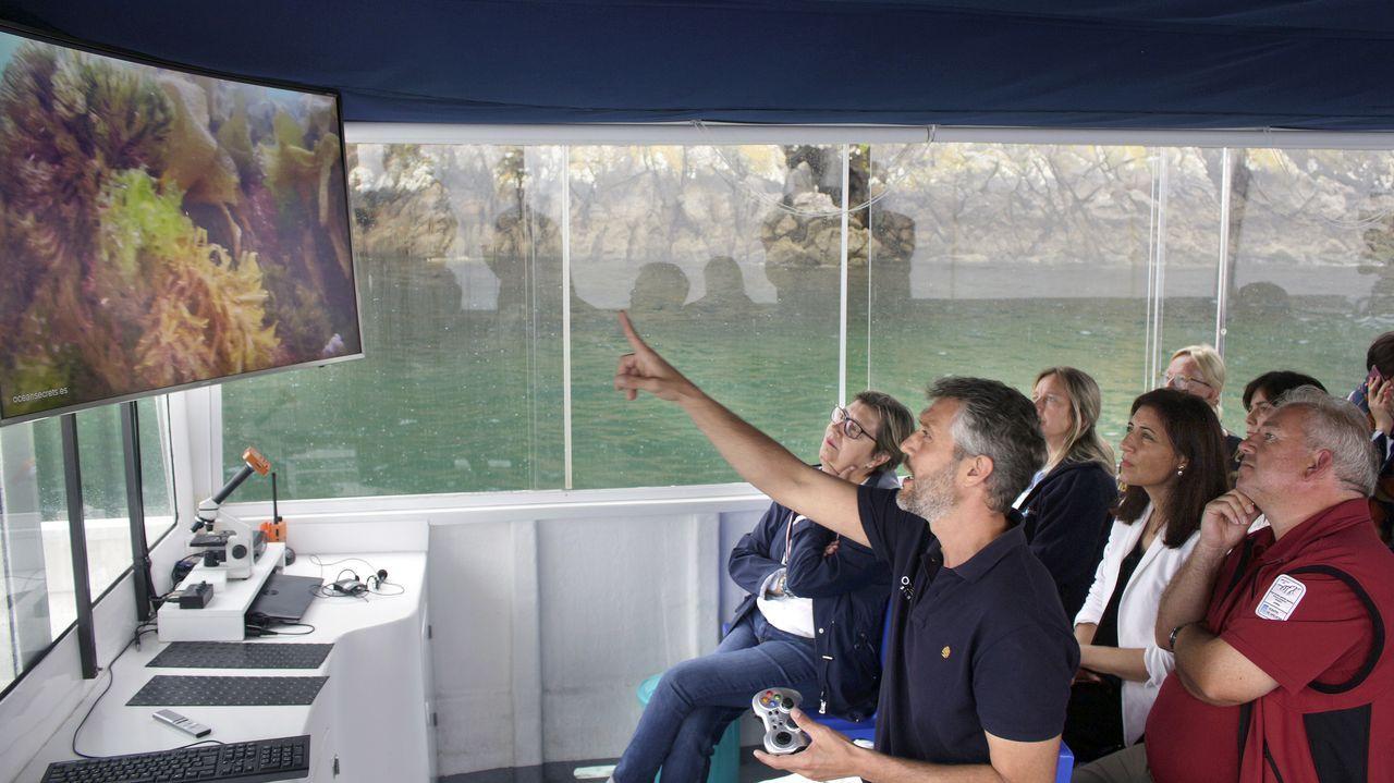 La pesca prueba en Marín a dar el salto a la alimentación de mascotas.A bordo del Nautilus, Andrés Blanco muestra a las conselleiras imágenes de la flora marina de la isla de San Martiño