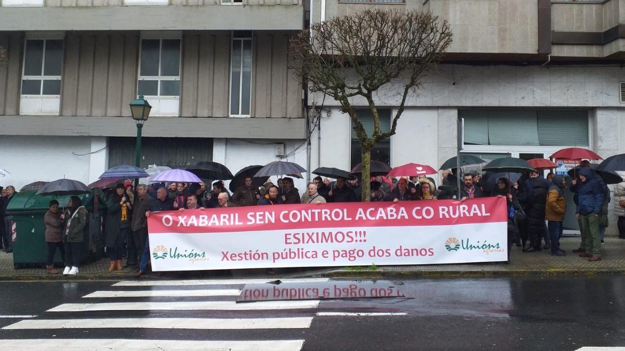 Protesta contra la caza con galgos y otras razas en Gijón.Una anterior convocatoria de la manifestación en Gijón