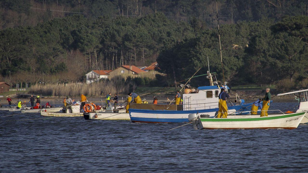 «Será posible que as máis de 500 embarcacións nunha mañá de marisqueo na ría de Muros-Noia emitan unha sinal de xeolocalización e que esta sirva para algo?», pregúntase a Federación Galega de Confrarías, que preside Pérez Sieira