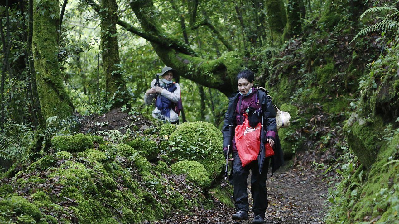 Hernini, uno de los peregrinos portugueses que hoy mismo caminaban hacia Compostela