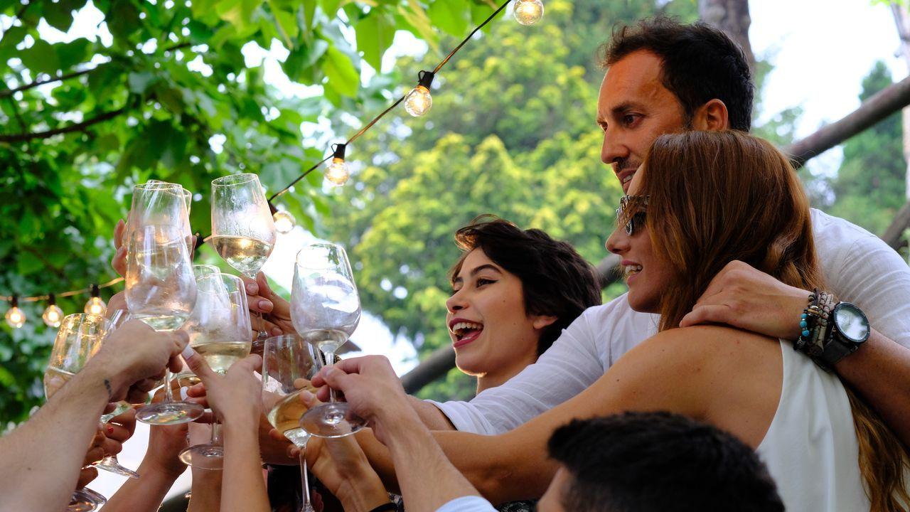 Vendimia en familia es el evento que nos da a conocer todos los aspectos técnicos de la recolección