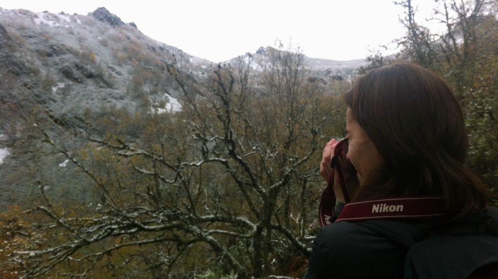 Una montañera saca una fotografía del bosque de Muniellos cubierto con la primera capa de nieve en la zona alta.Una montañera saca una fotografía del bosque de Muniellos cubierto con la primera capa de nieve en la zona alta