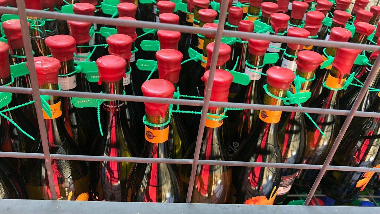 Charla sobre nuevas tecnologías en viticultura en Martín Códax.Remedios Carrasco