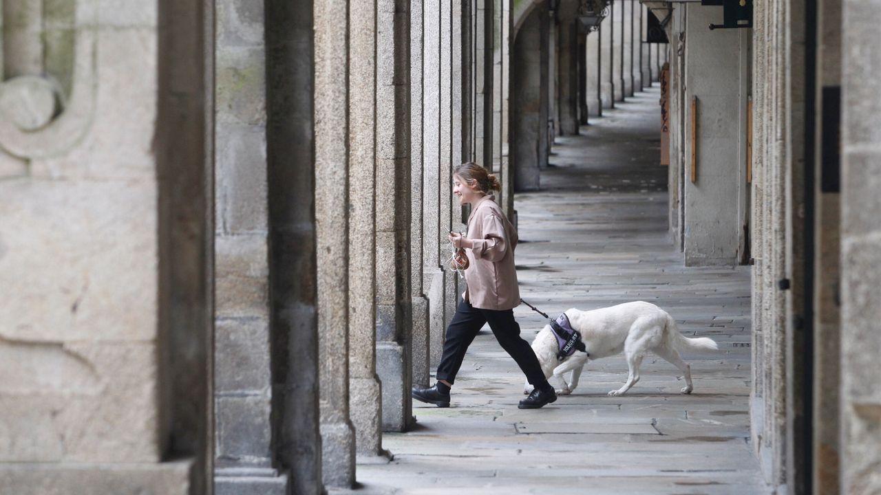 Una vecina de Santiago saca de paseo a su perro este domingo en el casco histórico