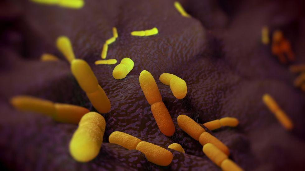 Imágenes de la pandemia en el mundo.El presidente chino, Xi Jinping