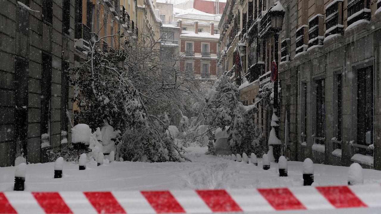Nieve y ramas caídas en Madrid