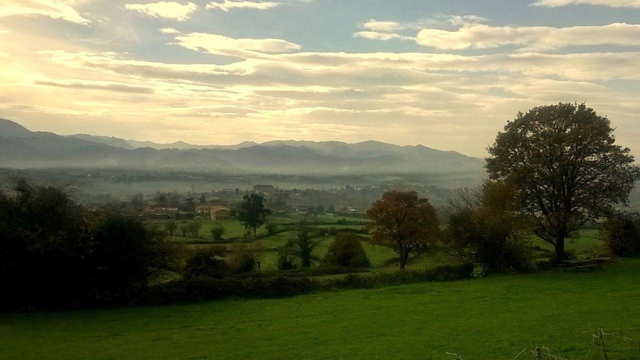 zona rural oviedo.Campiña del concejo de Oviedo. Prados con seto vivo arbolado entre Villamar y Villamorsén.