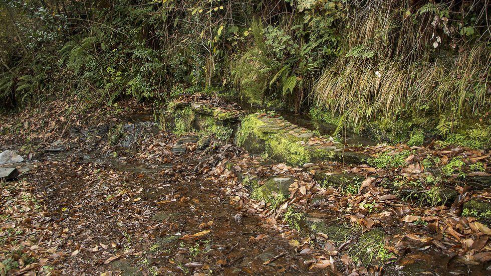 Las aguas de la Fonte da Costa son muy apreciadas por los vecinos de la zona