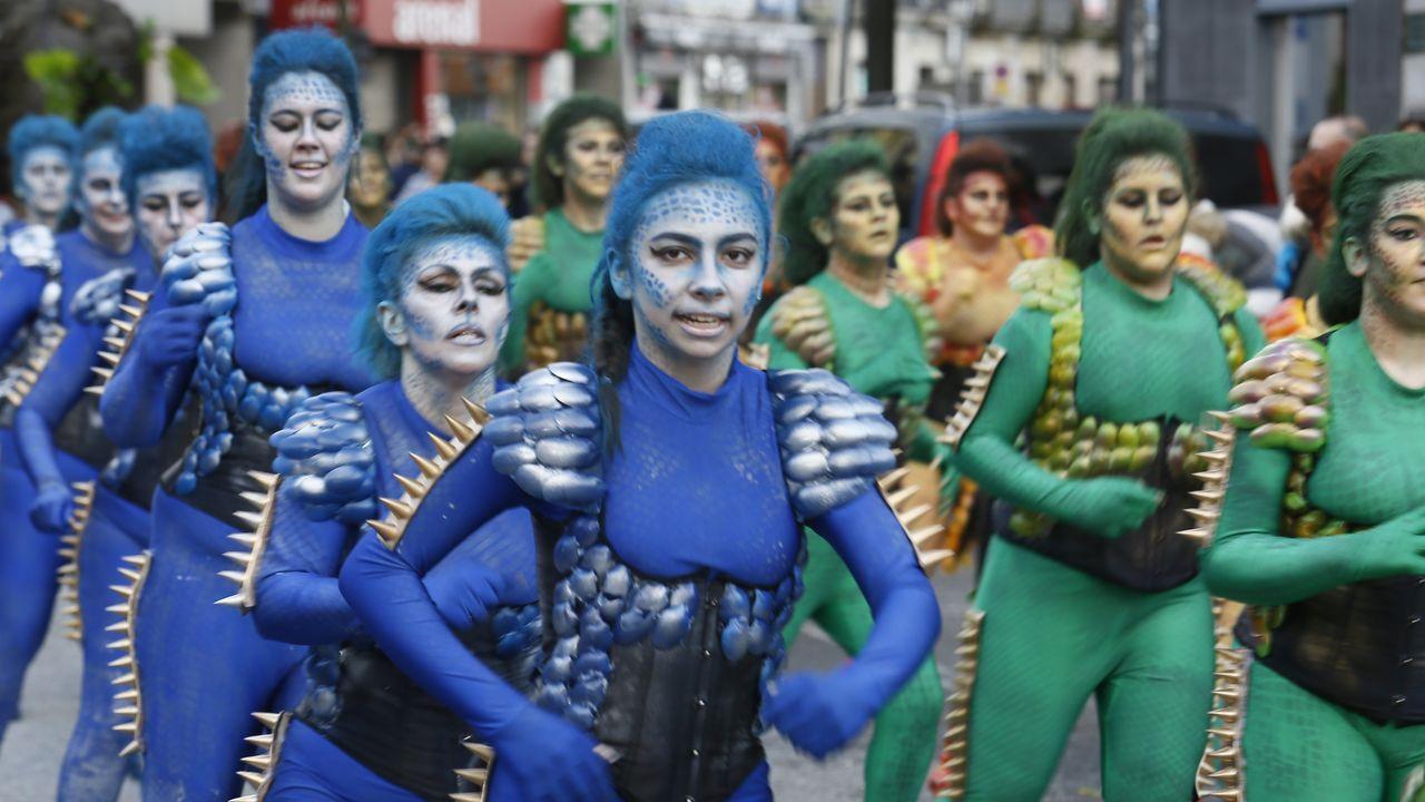 ¡Mira aquí las imágenes del miércoles de carnaval en barbanza!.Instalación de una trampa para velutinas en el municipio de Carballo, en una imagen de archivo