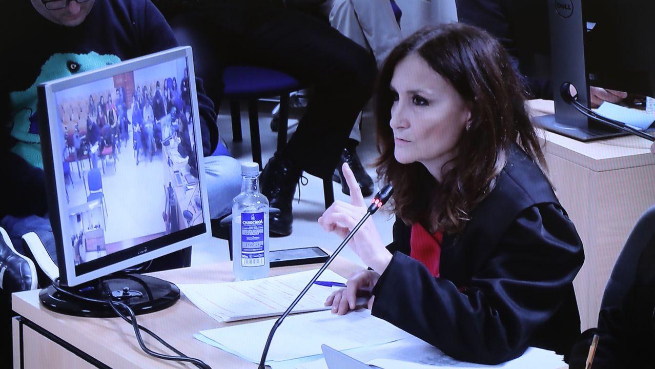 La abogada del Chicle, Fernanda Álvarez, expone sus conclusiones en la undécima jornada del juicio